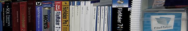 FileMaker Pro custom database