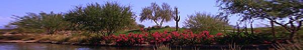 Phoenix, Arizona 2004